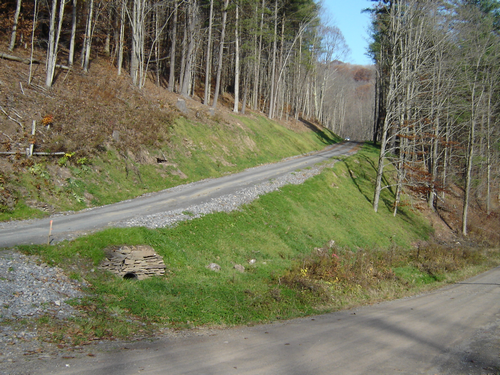 This forestry road in Tioga County was relocated away from a high quality stream